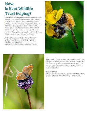 - Kent Wildlife Trust - Parish Council Spring Newsletter